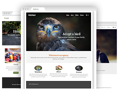A selection of fully customizable website themes